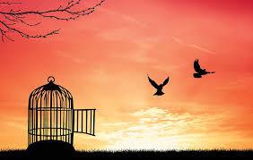 Forgiveness-brings-Freedom