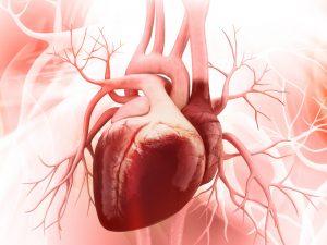 heart-disease, cardiopulmonary, high-blood pressure,
